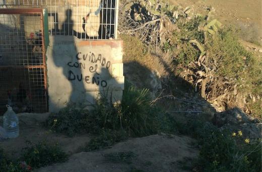 FORTUNA DE LA CUEVA