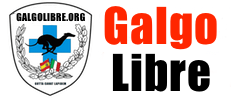 Galgo Libre, adozione Galgos e Podencos Spagnoli.